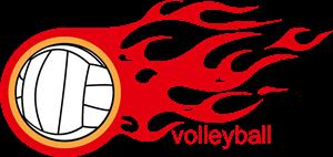 Volleyball logo C1FE8F5944 seeklogo.com  300x142 - TV Guide